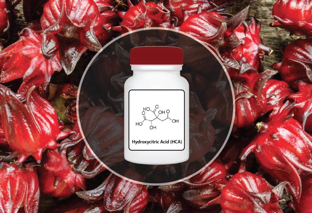 Hydroxycitric Acid