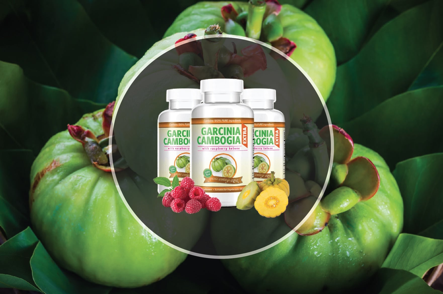 who should avoid garcinia cambogia