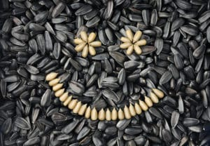Sunflower Seeds benefits